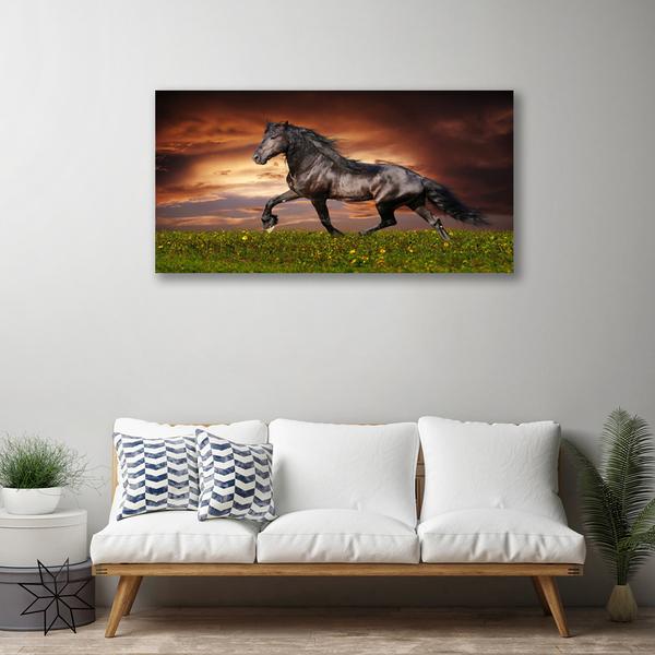 koń na obrazie na płótnie