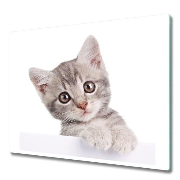 obraz szklany kot